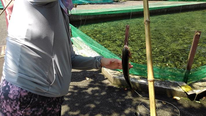 釣り サイズ小②